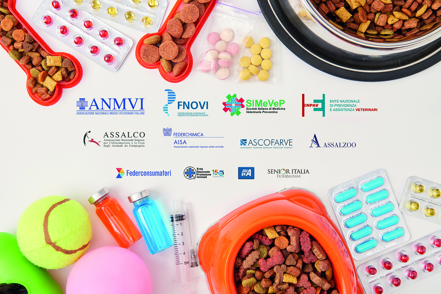 elevated view of various pills, bowls with dog food and balls on white surface